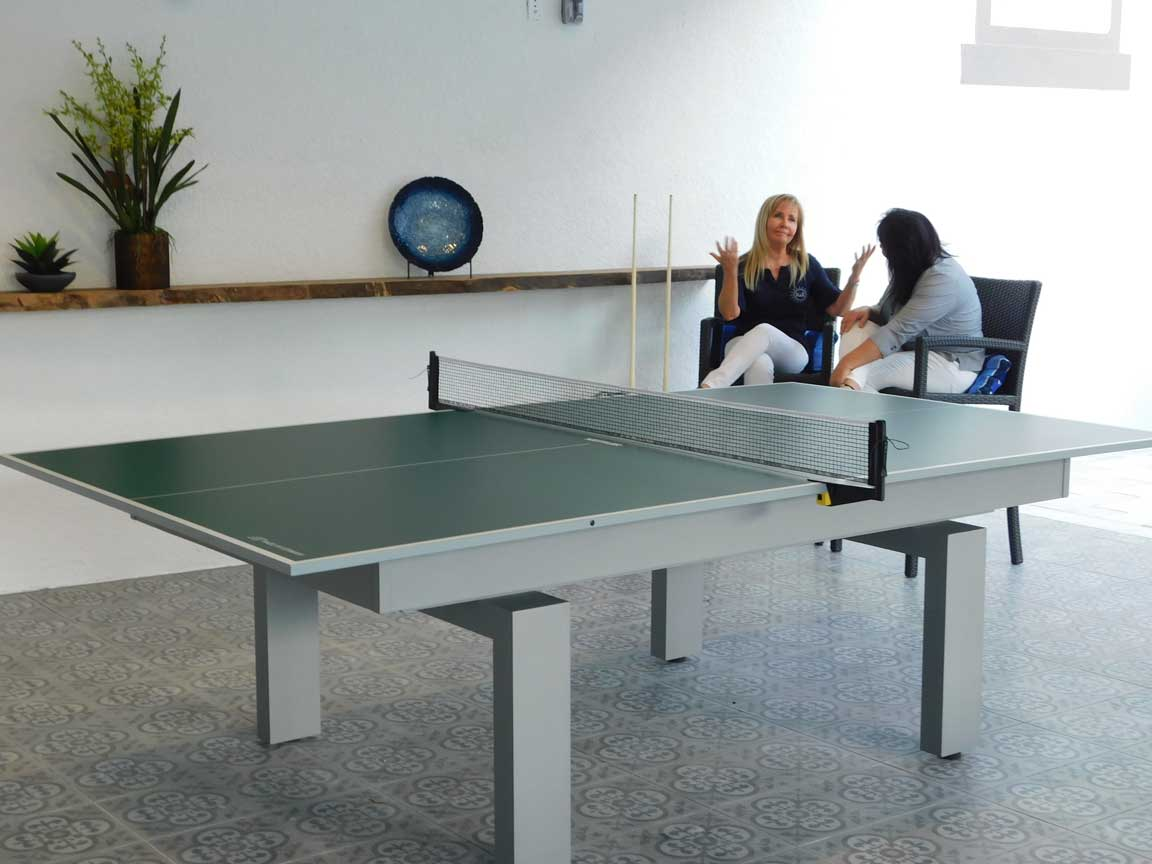 Outdoor Table Tennis Table from R&R Outdoors